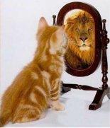 auto-estima (1)
