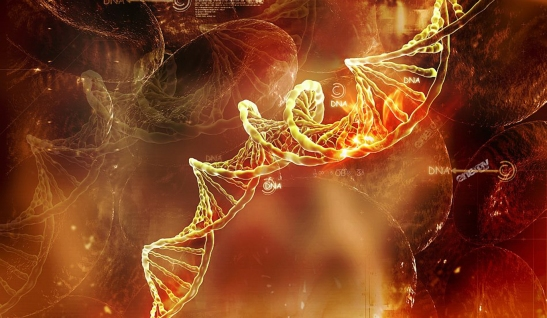 dna_abstract_fire_beautiful_genetics_3d_and_hd-wallpaper-1259486